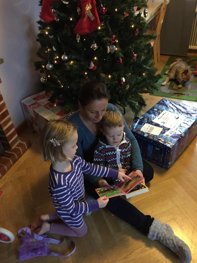 IMG_3022 kerstboom